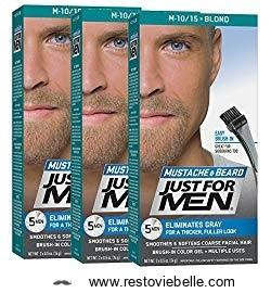 Just For Men Beard Dye Brush-In Color Gel
