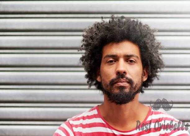 that 'fro though... - curly beard s and pictures Why Are Some Beards Curly