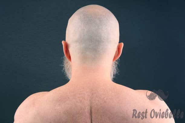 portrait of bald man with beard from back on dark background - shave the back s and pictures Things To Consider When Buying The Best Men's Back Shaver