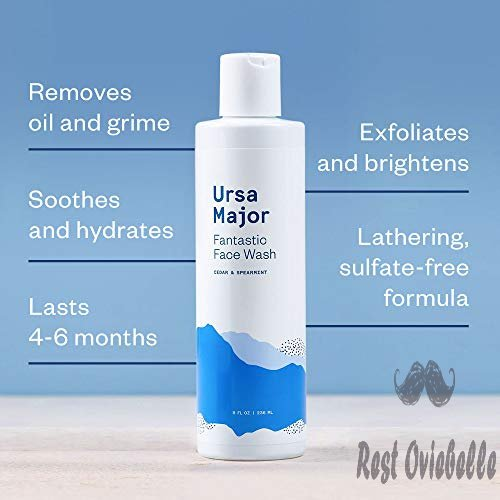Ursa Major Fantastic Face Wash 1